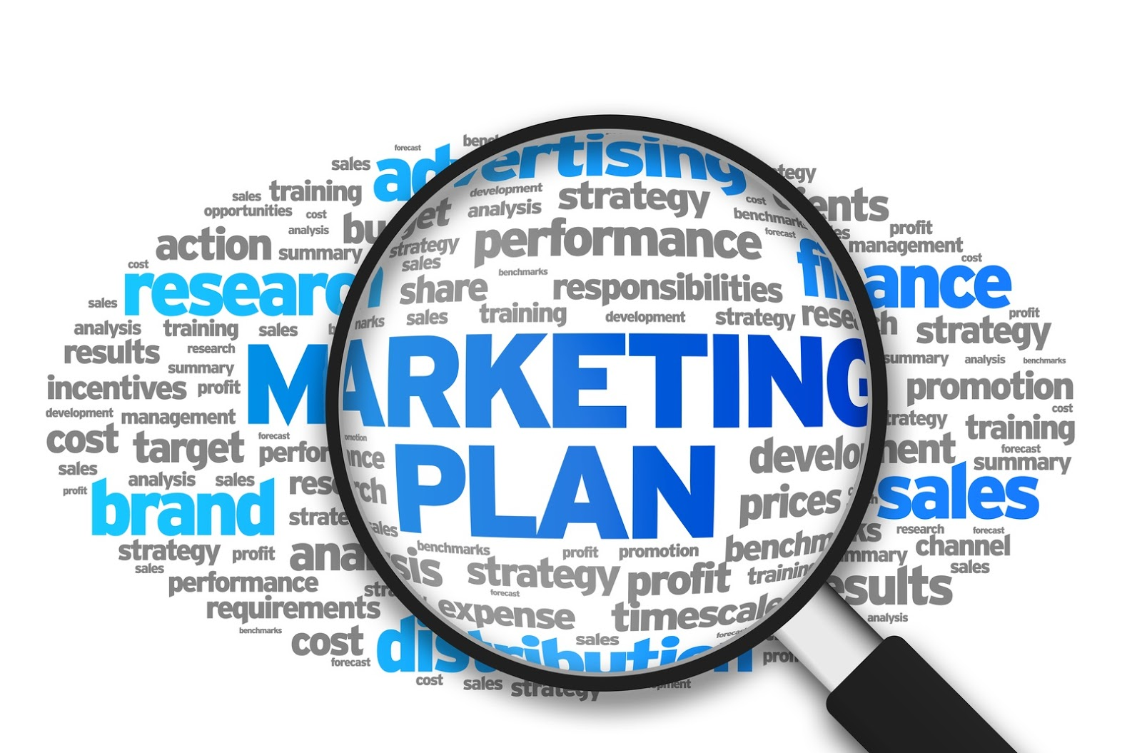 why need business plan